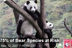 75% of Bear Species at Risk