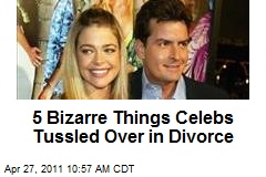 5 Bizarre Things Celebs Tussled Over in Divorce