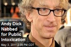 Andy Dick Nabbed for Public Intoxication
