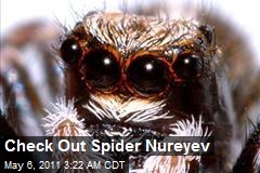 Check Out Spider Nureyev