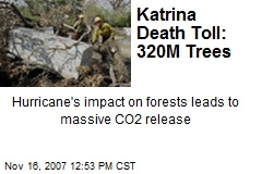 Katrina Death Toll: 320M Trees