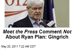 Newt Gingrich Tells Rush Limbaugh 'Meet the Press' 'Right-Wing Social Engineering' Comment Not About Paul Ryan