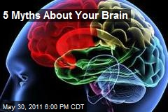 5 Myths About Your Brain