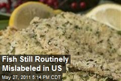 Fish Still Routinely Mislabeled in US