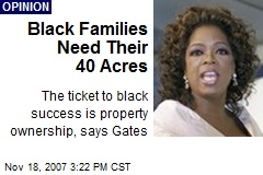 Black Families Need Their 40 Acres