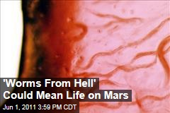"""The Discovery of """"Worms From Hell"""" Could Mean Life Exists Elsewhere in the Universe"""