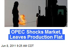OPEC Shocks Market, Leaves Production Flat