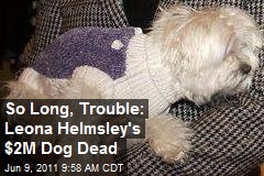 So Long, Trouble: Leona Helmsley's $2M Dog Dies