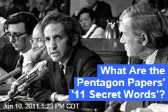 Vietnam War: What Are the Pentagon Papers' '11 Secret Words'?