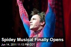 Spider-Man: Turn Off the Dark Finally Opens on Brodway