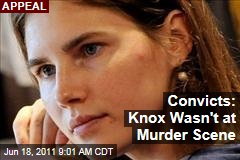 Amanda Knox Retrial: Convicts Testify That Rudy Guede Said She Didn't Kill Meredith Kercher