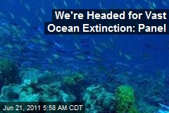 We're Headed for Vast Ocean Extinction: Panel