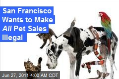 San Franscisco Wants to Make All Pet Sales Illegal
