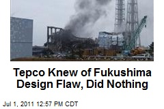 Tepco Knew of Fukushima Design Flaw, Did Nothing