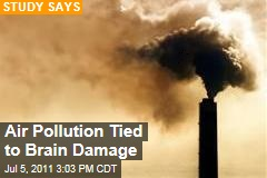 Ohio State University Study Links Air Pollution to Brain Damage