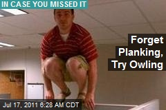 Forget Planking, Try Owling