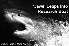 'Jaws' Leaps Into Research Boat