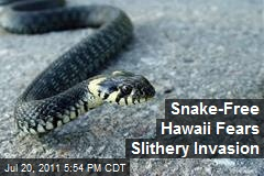 Snake-Free Hawaii Fears Slithery Invasion