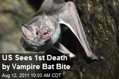 US Sees 1st Death by Vampire Bat Bite