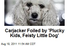 Carjacker Foiled by 'Plucky Kids, Feisty Little Dog'