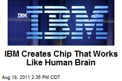 IBM Creates Chip That Works Like Human Brain