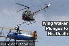 Wing Walker Plunges to His Death