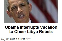 Obama Cheers Libya Rebels, Warns 'This Is Not Over'