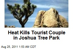 Heat Kills Tourist Couple in Joshua Tree Park