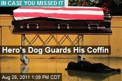 Hero's Dog Guards His Coffin
