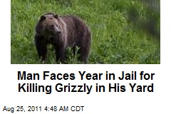 Man in Court for Killing Grizzly on Property