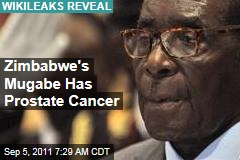 Zimbabwe's Robert Mugabe Has Prostate Cancer: WikiLeaks Diplomatic Cable