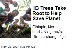 1B Trees Take Root to Help Save Planet
