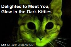 Delighted to Meet You, Glow-in-the-Dark Kitties