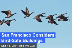 San Francisco Considers Bird-Safe Buildings