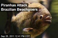 Piranhas Attack Brazilian Beachgoers