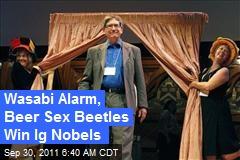 Wasabi Alarm, Beer Sex Beetles Win Ig Nobels