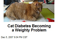 Cat Diabetes Becoming a Weighty Problem