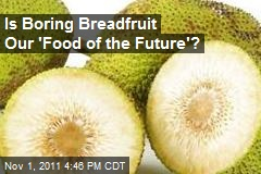 Is Boring Breadfruit Our 'Food of the Future'?