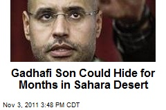 Gadhafi Son Could Hide for Months in Sahara Desert
