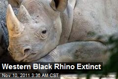 Western Black Rhino Extinct