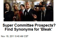 Super Committee Prospects? Find Synonyms for 'Bleak'