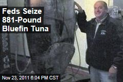 Feds Confiscate Fisherman's 881-Pound Bluefin Tuna