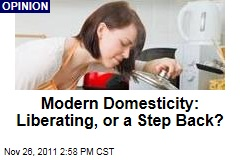 Modern Domesticity: Liberating Fun for Women, or the Death of Feminism?