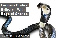 Farmers Protest Bribery—With Bags of Snakes