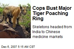 Cops Bust Major Tiger Poaching Ring