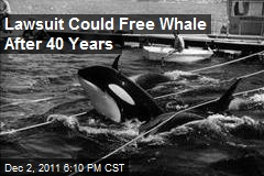 Lawsuit Could Free Whale After 40 Years