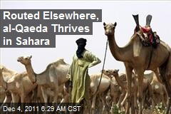 Routed Elsewhere, al-Qaeda Thrives in Sahara