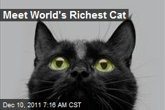 Meet World's Richest Cat