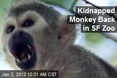 Kidnapped Monkey Back in SF Zoo