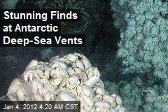 'Riot of Life' Found at Antarctic Deep-Sea Vents